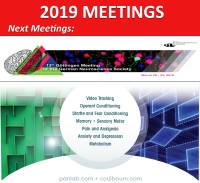 2019 Meetings & Events