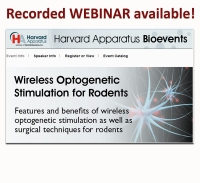 Recorded webinar available: Wireless Optogenetic Stimulation for rodents!